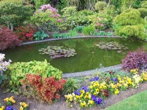 A kerti tó egyszerűen elkészíthető